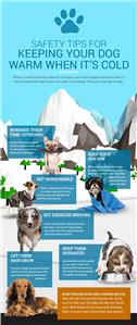 Dog Winter Safety Tips
